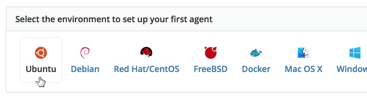 Buildkite agent setup buttons
